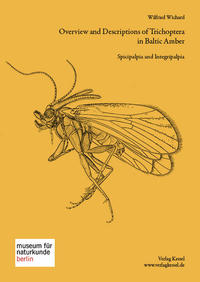 Trichopteren